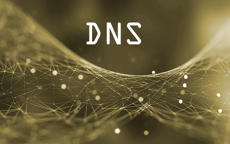 DNS-Einträge in 10 Sekunden überprüfen – DIG Linux und Windows