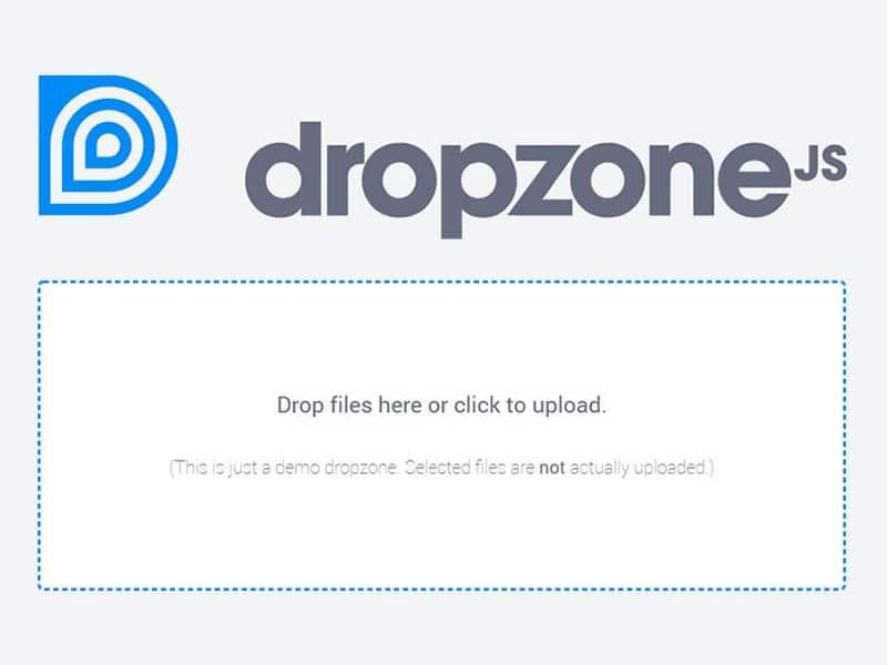Dropzonejs